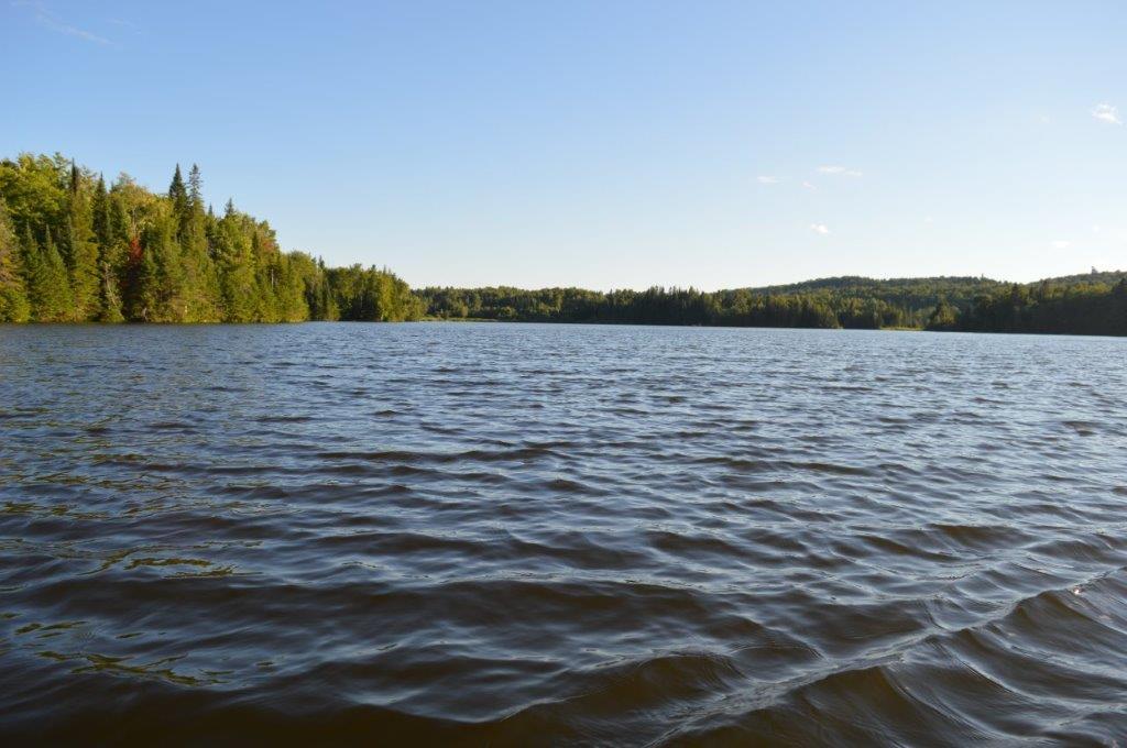 lac_milieu (3)